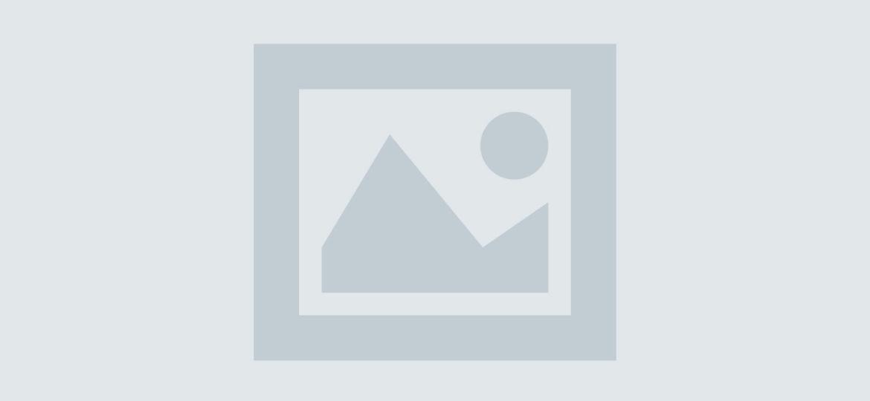 dummy-post-vertical (Demo)